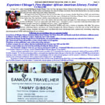 Read My Article About Soulful Chicago Book Fair