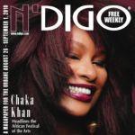 Chaka Cover - N'Digo